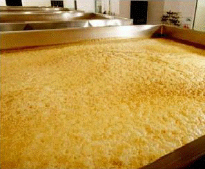 open fermentation of beer