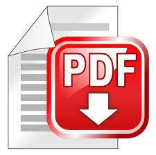 pdf-download-dokumentin