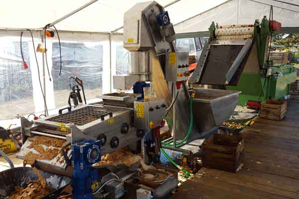 Equipment to fruit processing before fermentation