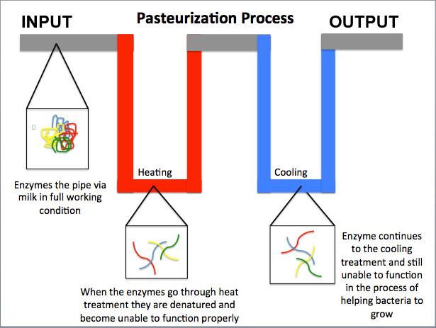 Scheme Pasteurization 01 - Zařízení pro pasterizaci piva