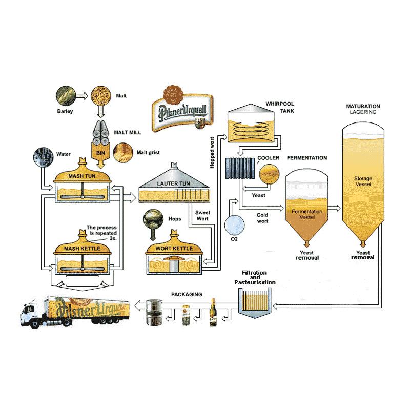 Services d'exploitation de brasseries